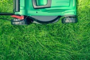 lawn mower on grass